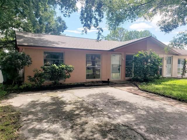 8903 Plum Grove Court, Tampa, FL 33634 (MLS #T3331064) :: Bridge Realty Group