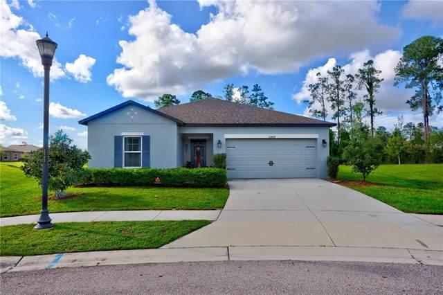 12499 Chaya Court, Spring Hill, FL 34610 (MLS #T3331089) :: Dalton Wade Real Estate Group