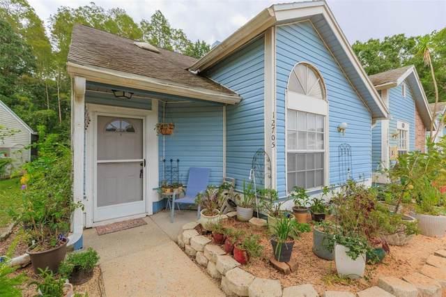 12705 Wood Trail Boulevard, Tampa, FL 33625 (MLS #T3331106) :: Cartwright Realty