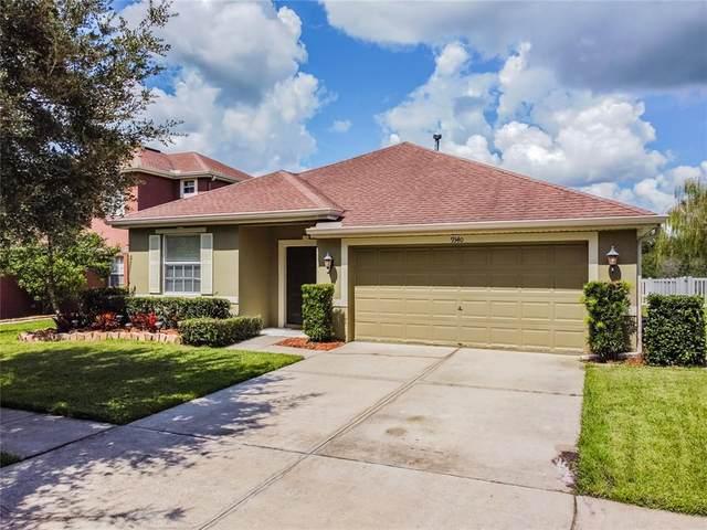 9340 Mandrake Court, Tampa, FL 33647 (MLS #T3331117) :: EXIT Gulf Coast Realty