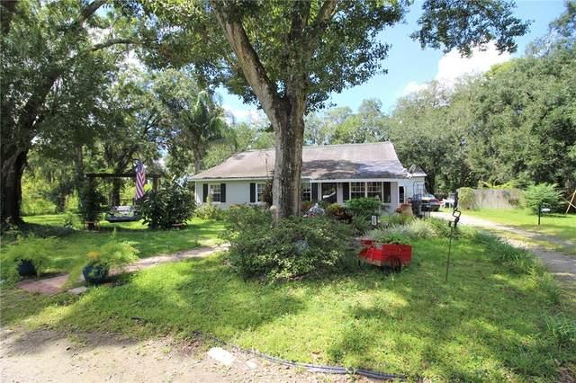 1720 N Dover Road, Dover, FL 33527 (MLS #T3331118) :: Zarghami Group