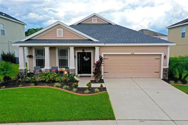 3712 Crystal Dew Street, Plant City, FL 33567 (MLS #T3331122) :: Zarghami Group