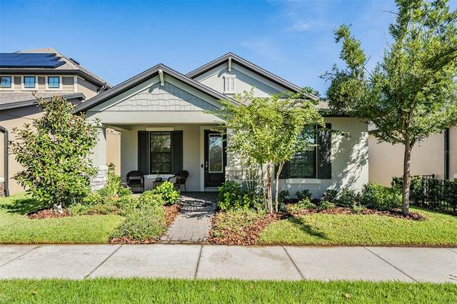 3150 Chapin Pass, Odessa, FL 33556 (MLS #T3331129) :: Globalwide Realty