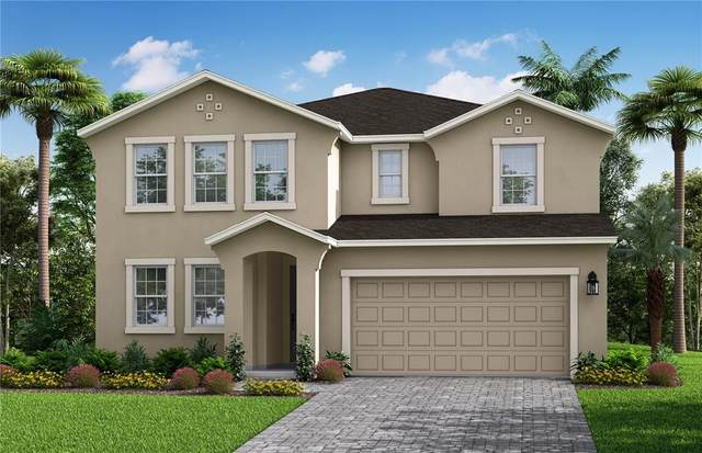 2482 Water Willow Drive 4/12, Lutz, FL 33558 (MLS #T3331136) :: Zarghami Group