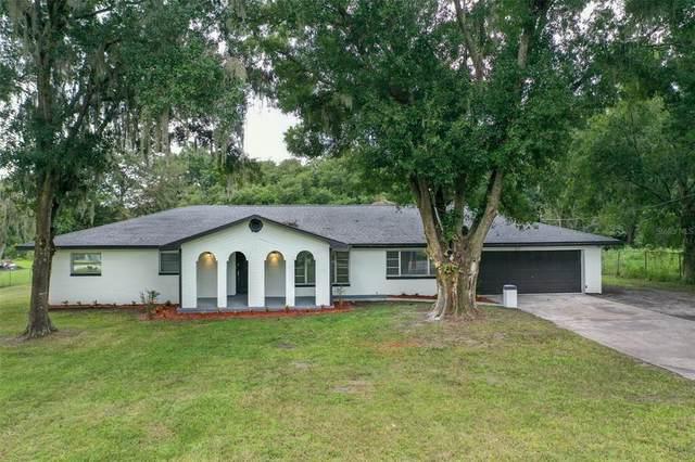 4802 Horton Road, Plant City, FL 33567 (MLS #T3331146) :: Zarghami Group