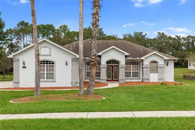 12041 Sapphire Drive, Spring Hill, FL 34609 (MLS #T3331156) :: Kelli and Audrey at RE/MAX Tropical Sands