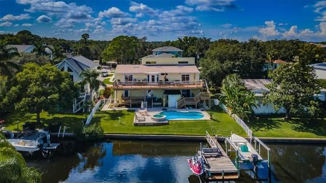 316 Hillpoint Drive, Palm Harbor, FL 34683 (MLS #T3331163) :: Zarghami Group