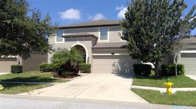 11713 Albatross Lane, Riverview, FL 33569 (MLS #T3331191) :: Zarghami Group