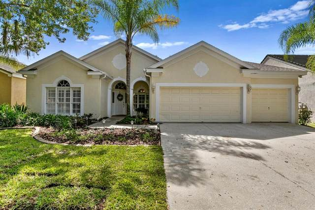 4943 Ebensburg Drive, Tampa, FL 33647 (MLS #T3331205) :: Team Bohannon