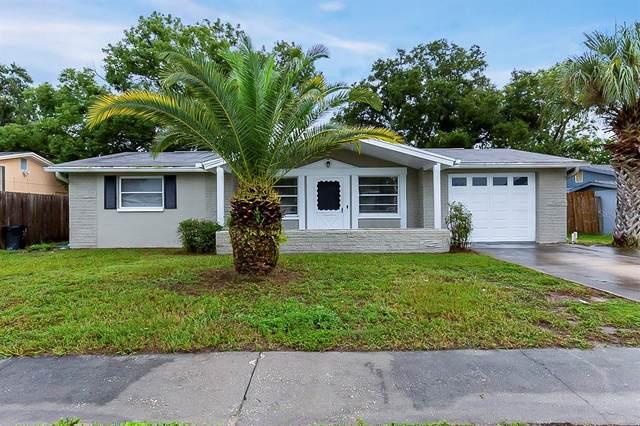 6414 Kentfield Avenue, New Port Richey, FL 34653 (MLS #T3331209) :: Orlando Homes Finder Team
