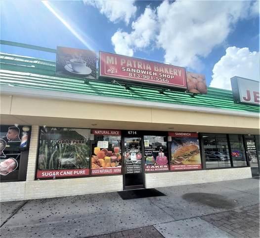 6714 Hanley Road, Tampa, FL 33634 (MLS #T3331236) :: Bridge Realty Group