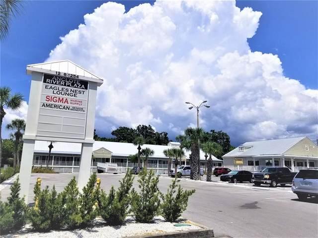 1208 N Pinellas Avenue, Tarpon Springs, FL 34689 (MLS #T3331240) :: Team Pepka