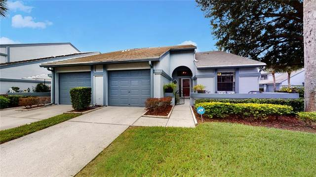 4180 Brentwood Park Circle, Tampa, FL 33624 (MLS #T3331246) :: Everlane Realty