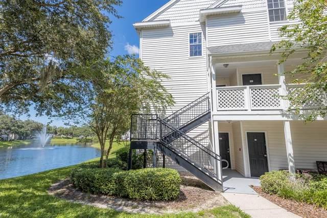 3304 Haviland Court #302, Palm Harbor, FL 34684 (MLS #T3331253) :: Team Buky