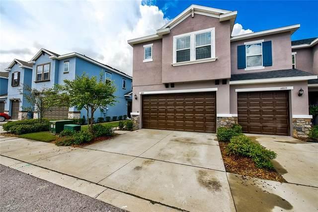 6837 Citrus Creek Lane, Tampa, FL 33625 (MLS #T3331254) :: Cartwright Realty
