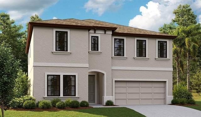 12619 Horseshoe Bend Drive, Lithia, FL 33547 (MLS #T3331265) :: Cartwright Realty