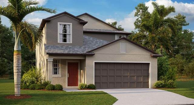 7229 Ronnie Gardens Court, Tampa, FL 33619 (MLS #T3331298) :: The Curlings Group