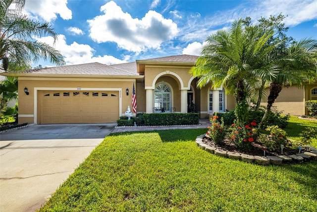 5335 Winhawk Way, Lutz, FL 33558 (MLS #T3331302) :: Team Bohannon