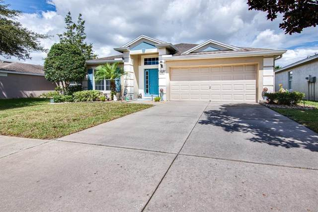 338 Sea Holly Drive, Brooksville, FL 34604 (MLS #T3331346) :: Carmena and Associates Realty Group