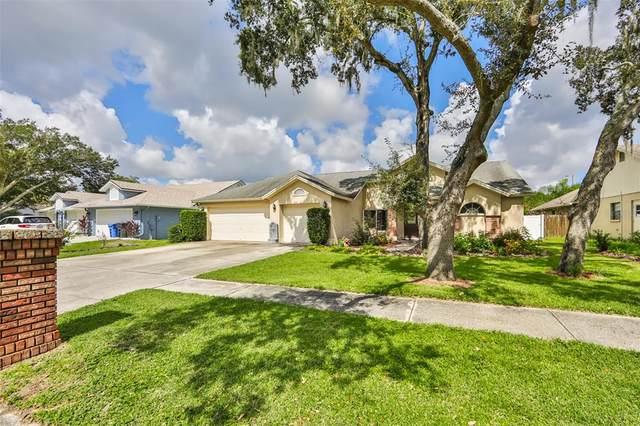 1404 Clarion Drive, Valrico, FL 33596 (MLS #T3331353) :: Team Bohannon