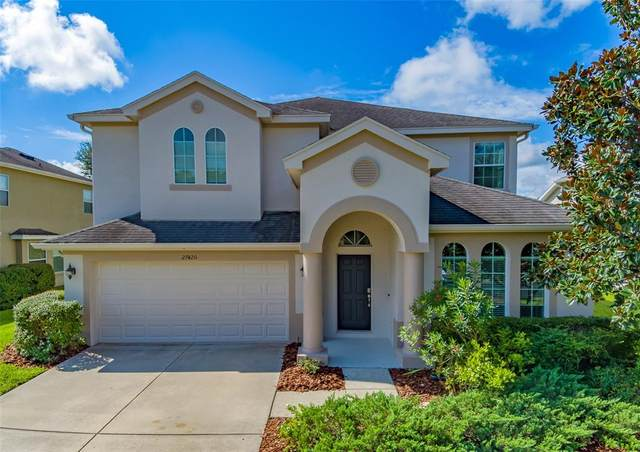27420 Silver Thatch Drive, Wesley Chapel, FL 33544 (MLS #T3331361) :: Cartwright Realty