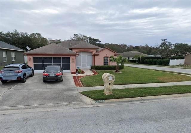 12004 Tasha Court, New Port Richey, FL 34654 (MLS #T3331391) :: Lockhart & Walseth Team, Realtors