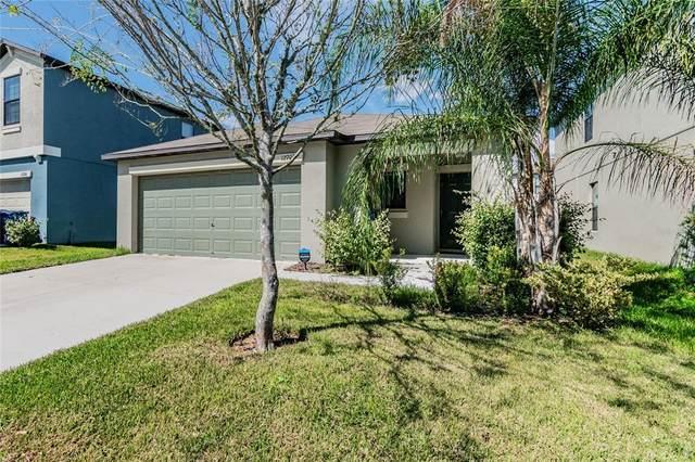12708 Hampton Hill Drive, Riverview, FL 33578 (MLS #T3331402) :: Dalton Wade Real Estate Group