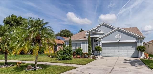 12007 Dawn Vista Dr, Riverview, FL 33578 (MLS #T3331417) :: Dalton Wade Real Estate Group