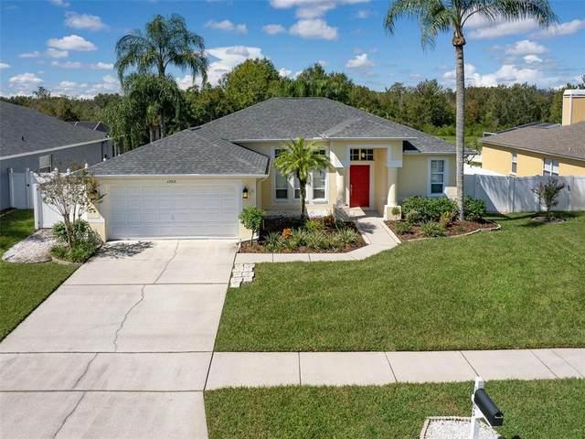 1705 Audubon Trail, Lutz, FL 33549 (MLS #T3331418) :: Team Bohannon