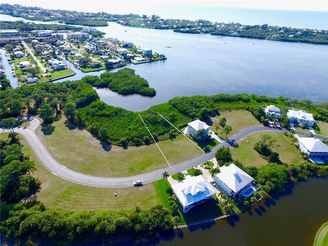 10091 Eagle Preserve Drive, Englewood, FL 34224 (MLS #T3331422) :: The Hustle and Heart Group