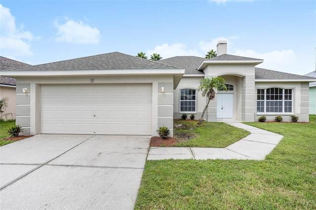 6937 Cohasset Circle, Riverview, FL 33578 (MLS #T3331436) :: Cartwright Realty
