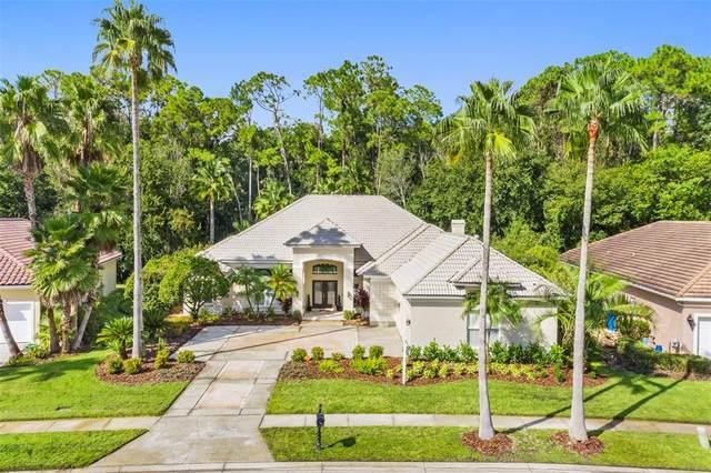 10112 Radcliffe Drive, Tampa, FL 33626 (MLS #T3331446) :: Team Bohannon