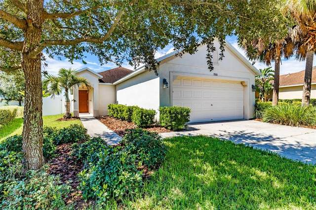 7006 Forest Mere Drive, Riverview, FL 33578 (MLS #T3331458) :: Cartwright Realty