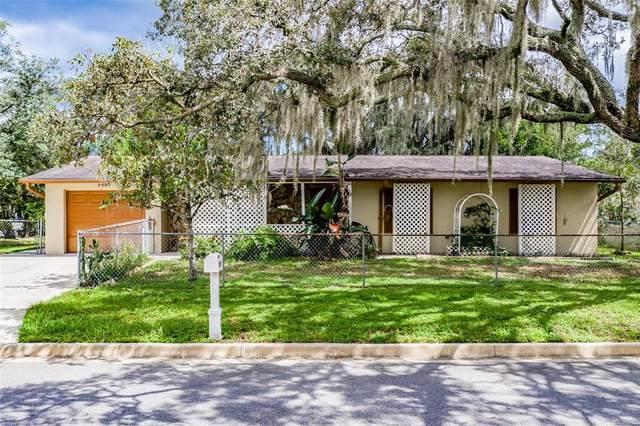 9807 N Pawnee Avenue, Tampa, FL 33617 (MLS #T3331459) :: Cartwright Realty