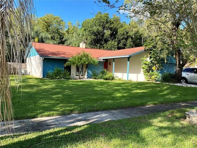 4713 Heath Avenue, Tampa, FL 33624 (MLS #T3331461) :: Zarghami Group