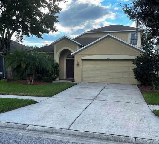 3931 Duke Firth Street, Land O Lakes, FL 34638 (MLS #T3331474) :: Globalwide Realty
