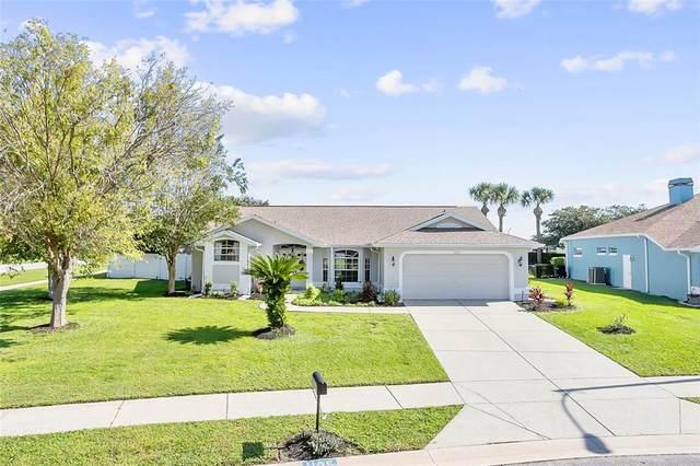 1105 S Fieldview Loop, Lecanto, FL 34461 (MLS #T3331494) :: Premium Properties Real Estate Services