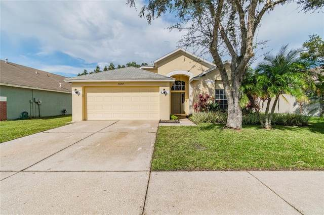 31207 Chatterly Drive, Wesley Chapel, FL 33543 (MLS #T3331505) :: Stiver Firth International