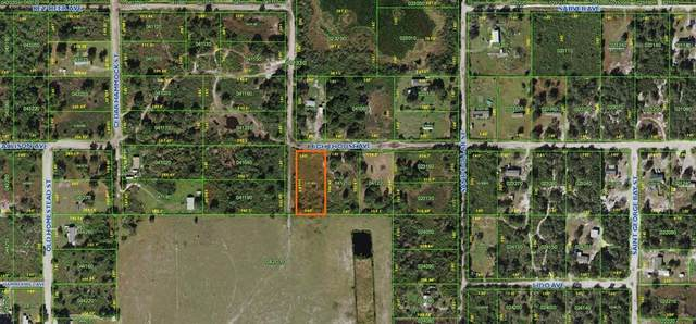 0 Lighthouse Avenue, Lake Wales, FL 33859 (MLS #T3331512) :: RE/MAX LEGACY