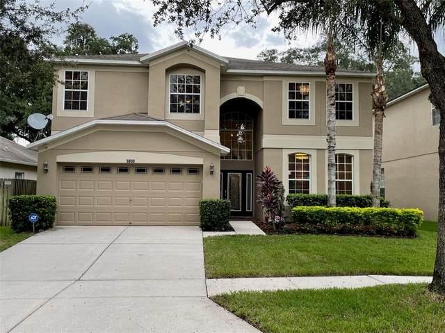 5830 Butterfield Street, Riverview, FL 33578 (MLS #T3331513) :: Your Florida House Team