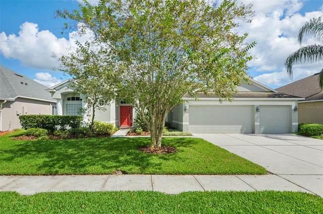 26805 Shoregrass Drive, Wesley Chapel, FL 33544 (MLS #T3331524) :: Everlane Realty