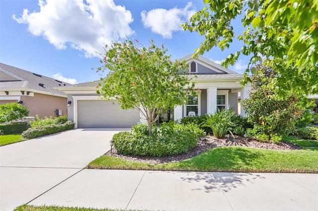 6105 Colmar Place, Apollo Beach, FL 33572 (MLS #T3331538) :: Griffin Group