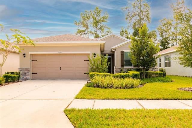 17777 Garsalaso Circle, Brooksville, FL 34604 (MLS #T3331539) :: Your Florida House Team