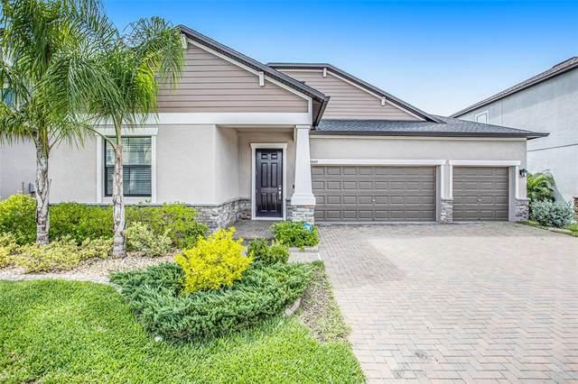 9849 Sage Creek Drive, Sun City Center, FL 33573 (MLS #T3331540) :: Cartwright Realty