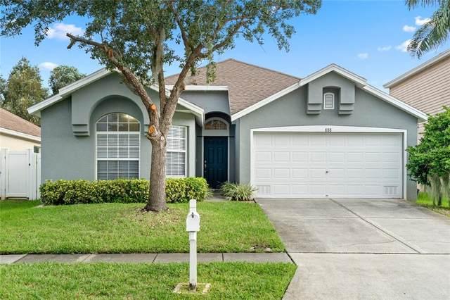 888 Addison Drive NE, St Petersburg, FL 33716 (MLS #T3331559) :: Expert Advisors Group