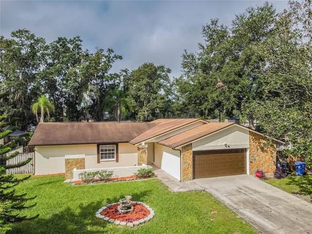 4113 Canoga Park Drive, Brandon, FL 33511 (MLS #T3331589) :: Griffin Group