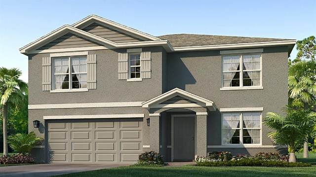 10843 Norman Place, Parrish, FL 34219 (MLS #T3331608) :: Cartwright Realty