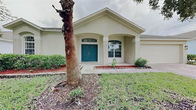 3711 Juneberry Drive, Wesley Chapel, FL 33543 (MLS #T3331609) :: RE/MAX Marketing Specialists