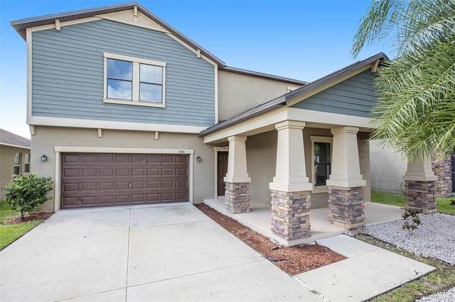 11061 Little Blue Heron Drive, Riverview, FL 33579 (MLS #T3331691) :: Expert Advisors Group