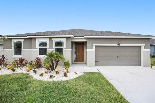 13270 Baby Belle Drive, Riverview, FL 33579 (MLS #T3331700) :: Cartwright Realty